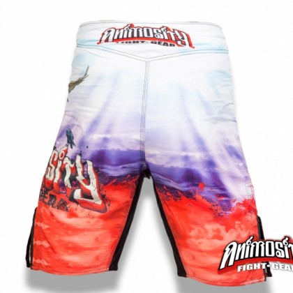 ANIMOSITY B#1! COLOUR MMA FIGHT SHORTS